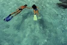 Proč je zdravé plavat